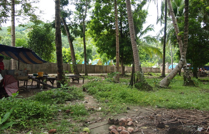 tags lot for sale in northern cebu carmen beside a river