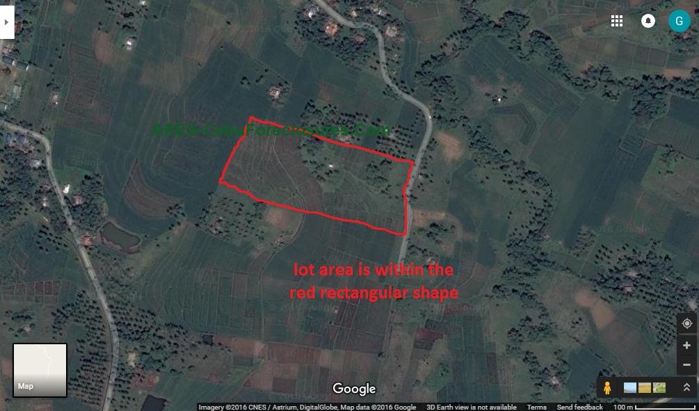 Farm In Ubay Bohol Near Airport Cebuforeclosures Amp Real